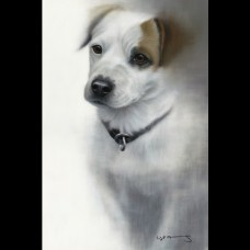 Framed Art - Jack Russell by Nigel Hemming